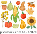 Set of autumn fruits and vegetables. Isolated elements for design on a white background. Vector drawing 61532078
