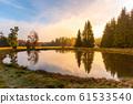 Trees reflected in the pond. Kladska peat bog National Reserve near Marianske Lazne, Czech Republic 61533540