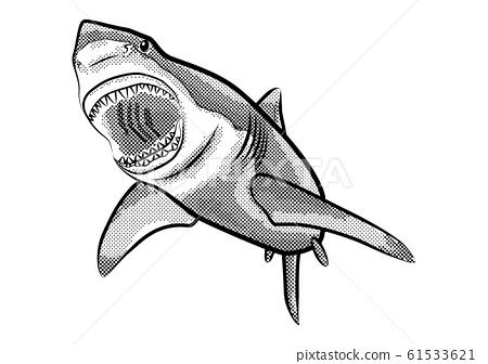 鯊魚圖(黑色和白色) 61533621