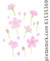 Colored pencil illustration-cherry blossom 61535369