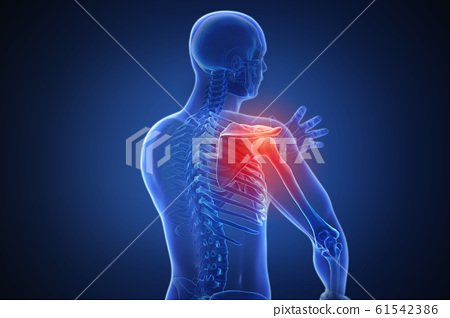 3d rendering of a human body with highlighted in pain 007 61542386