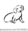 Vector illustration a dog isolated on white 61549822