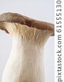 King oyster mushroom Mushroom Ingredient photo King oyster mushroom 61555130