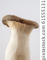 King oyster mushroom Mushroom Ingredient photo King oyster mushroom 61555131