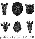 The black geometric heads of rhino, lion, hippo, giraffe, gorilla and zebra. Set polygonal abstract animals of Africa 61555290