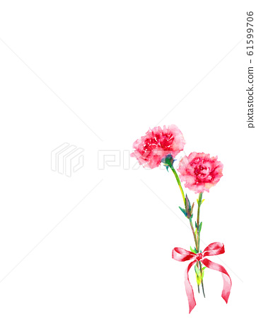 Flower carnation ribbon watercolor illustration 61599706