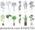 葉子植物 61602745