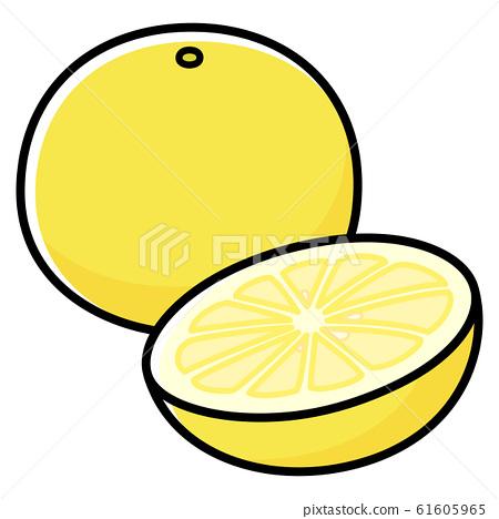 Grapefruit cartoon 61605965