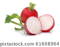 Red radish with slices isolated on white 61608964