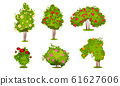 Bushes of Roses Isolated on White Background Vector Set 61627606