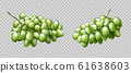 Realistic grapes bunches ripe green berries set 61638603