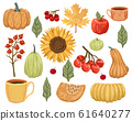 Set of elements for design on an autumn theme. Vegetables, berries and plants. Isolates on a white background. 61640277