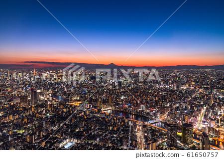 《Tokyo》 Tokyo night view / Tokyo whole view 61650757