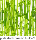 Vector background with green bamboo stems seamless pattern 61654521