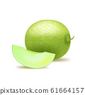 Realistic Detailed 3d Whole Honeydew Melon and Slice. Vector 61664157