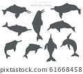 River dolphins set. Marine mammals collection. 61668458