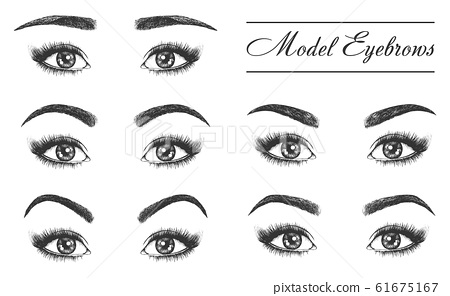 Female eyebrows, eyes and lashes, makeup styles 61675167