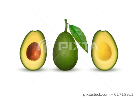 Realistic avocado. Tropical fruit. 3d illustration whole avocado and sectional view 61715913