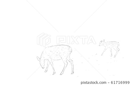 Realistic line drawing of sika deer 61716999