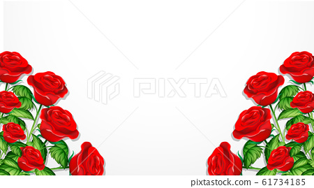 Valentine theme with red roses on white background 61734185