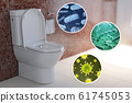 Toilet bowl with different types of bacteria, 61745053