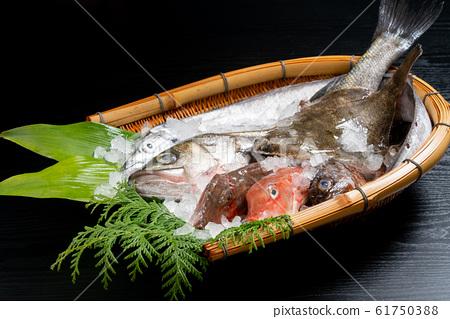 什錦鮮魚 61750388