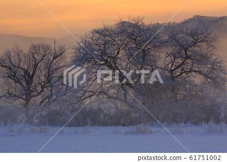 Winter snow scene 61751002