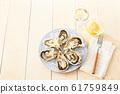 หอยนางรม 61759849