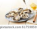 หอยนางรม 61759850