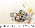 หอยนางรม 61759856