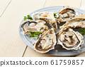 หอยนางรม 61759857