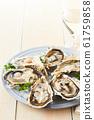 หอยนางรม 61759858