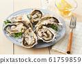 หอยนางรม 61759859