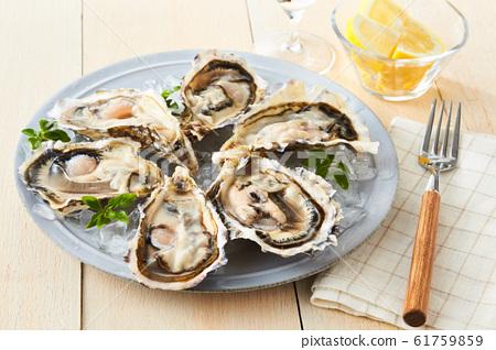 牡蛎 61759859