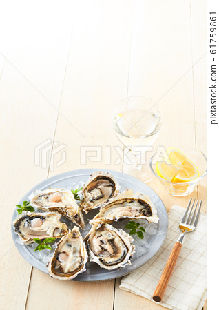 oyster 61759861