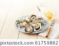 หอยนางรม 61759862