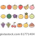 과일 - 생김새 정리 61771404
