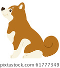 Shiba Inu sitting sideways without outline 61777349