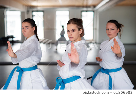 Group of young women practising karate indoors in gym. 61806982