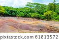Seven Coloured Earths in Chamarel, Mauritius Island, Indian Ocean 61813572