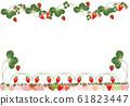 딸기 잎과 꽃 화려한 딸기 일러스트 배경 소재 61823447