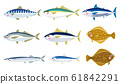 Illustration of various fish 61842291