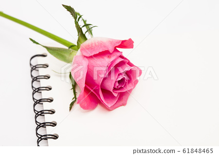Notepad and pink rose flower on white 61848465