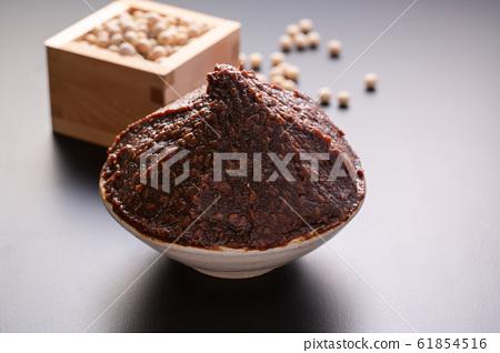 味iso大豆圖像 61854516
