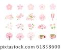 Various cherry set 61858600