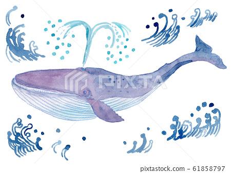 藍鯨水彩 61858797