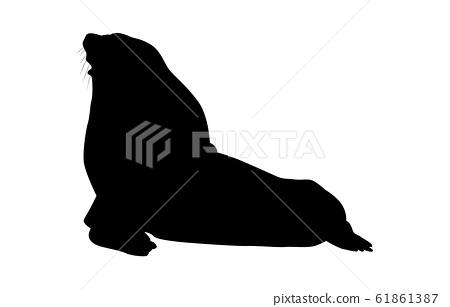 Animal silhouette sea and river sea lion 2 61861387