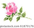 rose201129pix7 61870176