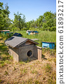Old empty wooden doghouse in rural bee-garden for 61893217