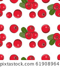 Colored seamless pattern with cowberries in vintage style 61908964